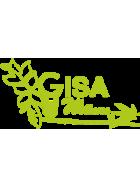 Gisa Wellness